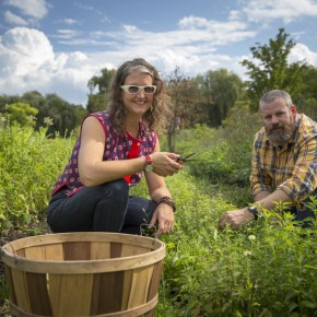 Pharm to Table: Field Apothecary Invigorates Herbal Traditions